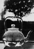 Linda McCartney tea pot image for Women In Photography International 20th Anniverary Exhibition, San Juan Capistrano